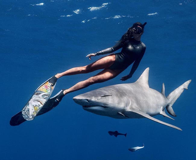 A powerful image of a woman diving with a scary looking shark in the open ocean in the Florida Keys.